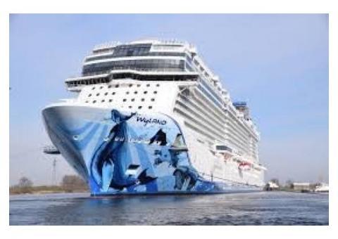 Norwegian Cruise Line Cruise Next Certificates
